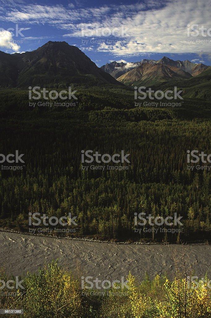 Alaskan Rushing River royalty-free stock photo