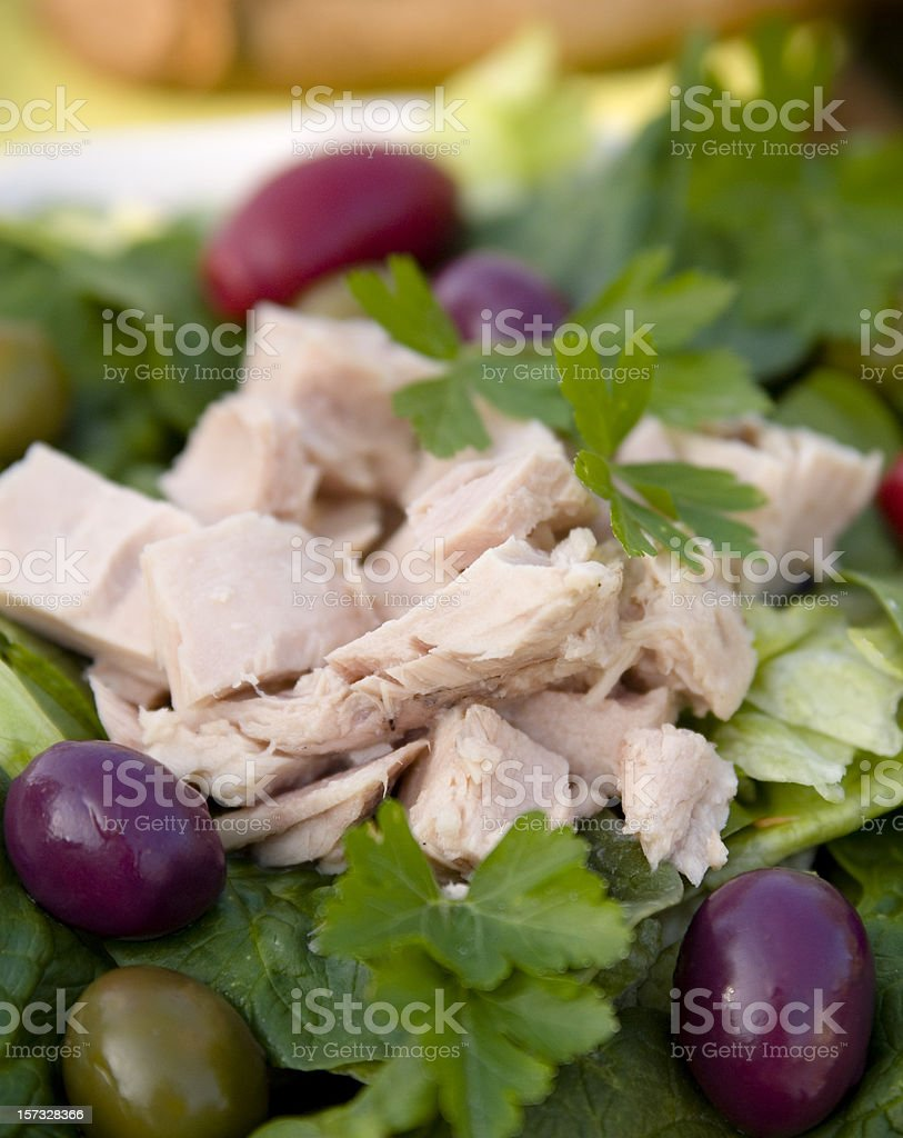 Albacore Canned Tuna & Olives with Spinach Lettuce, Healthy Seafood Salad royalty-free stock photo