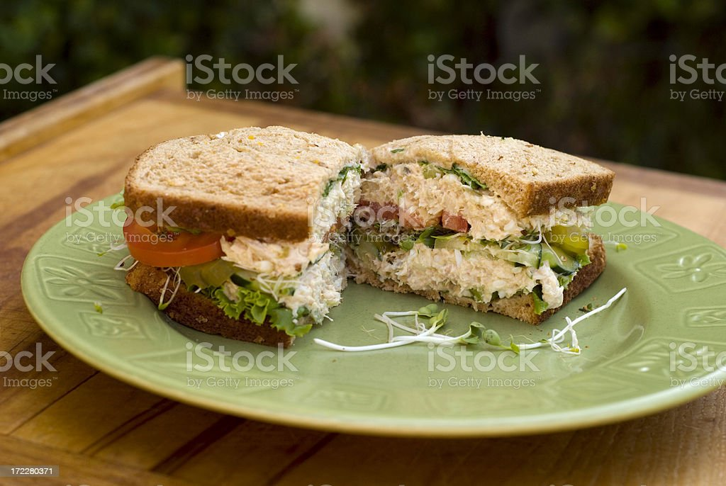 Albacore Tuna Salad Sandwich & Alfalfa Sprouts & Vegetables, Healthy Picnic Lunch royalty-free stock photo