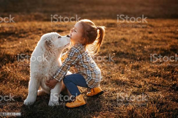 Albai dog is my favourite picture id1145118489?b=1&k=6&m=1145118489&s=612x612&h=yzzc34w 6usag ak09osghxzj5gwkn3eiccggpmt0bq=