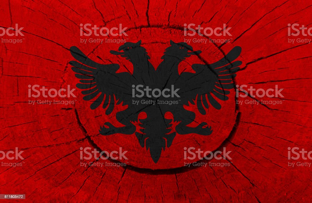Albanian flag is painted on a tree stump stock photo