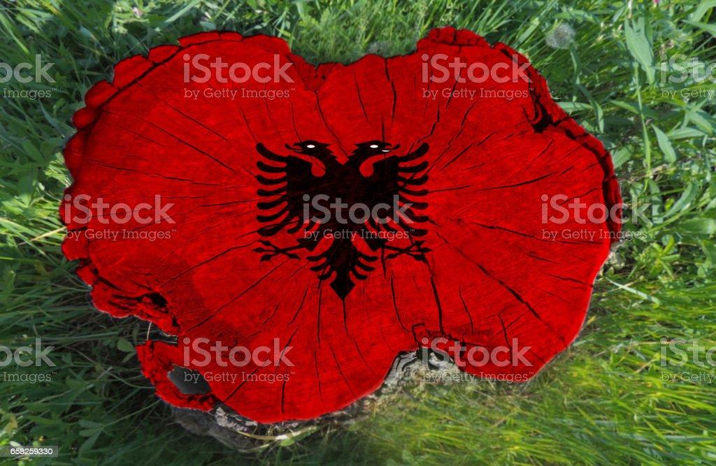 Albanian flag painted on a tree stump stock photo