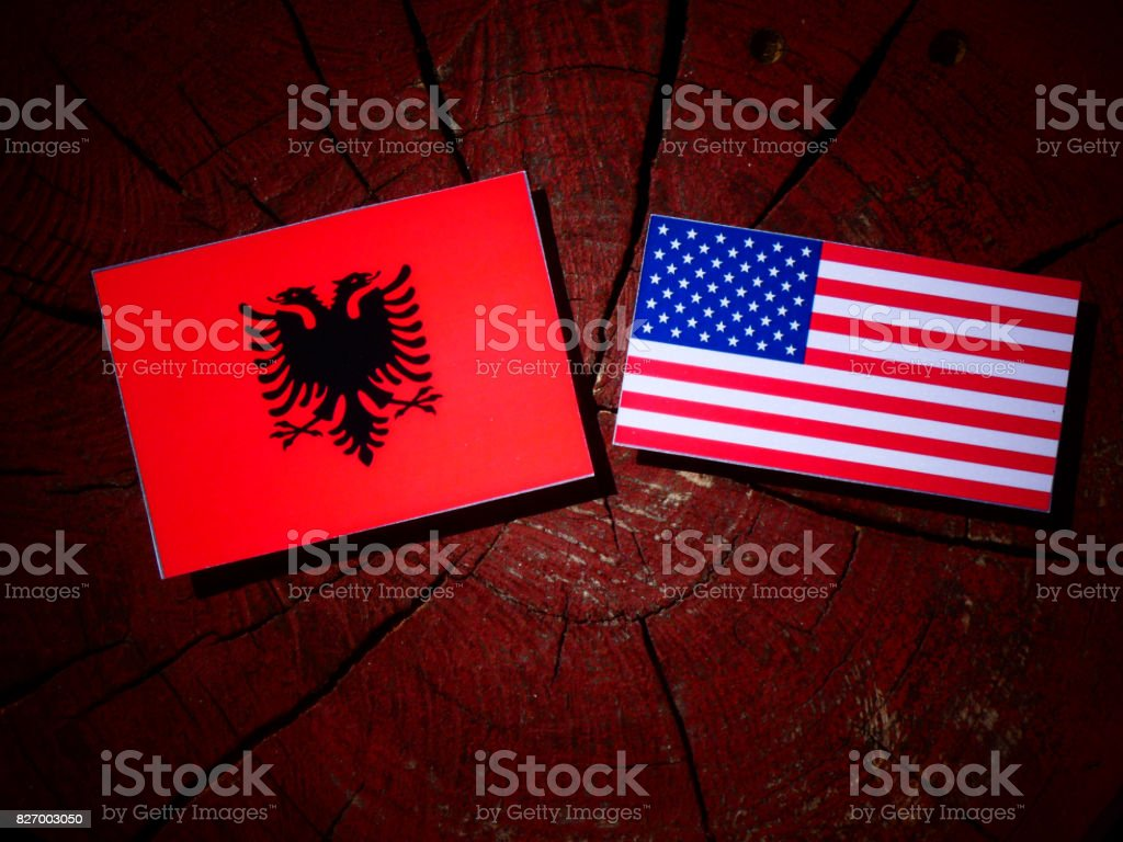 Bandera Albanesa Con La Bandera De Estados Unidos En Un Tocon De