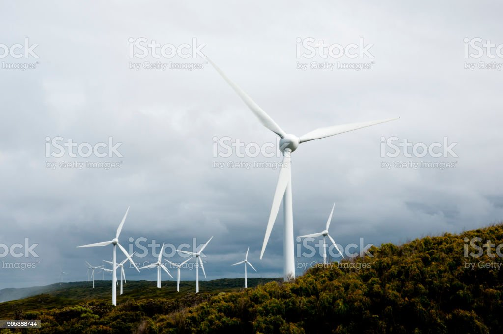 Albany Wind Farm Stock Photo & More Pictures of Albany - Western Australia