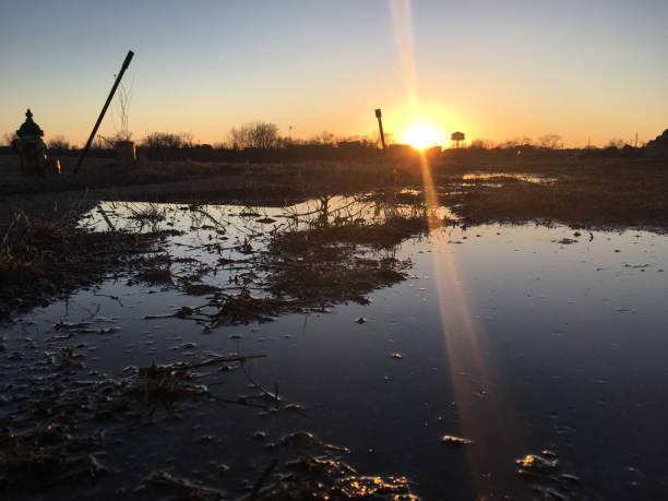 Albert Lea Puddle Sunset stock photo