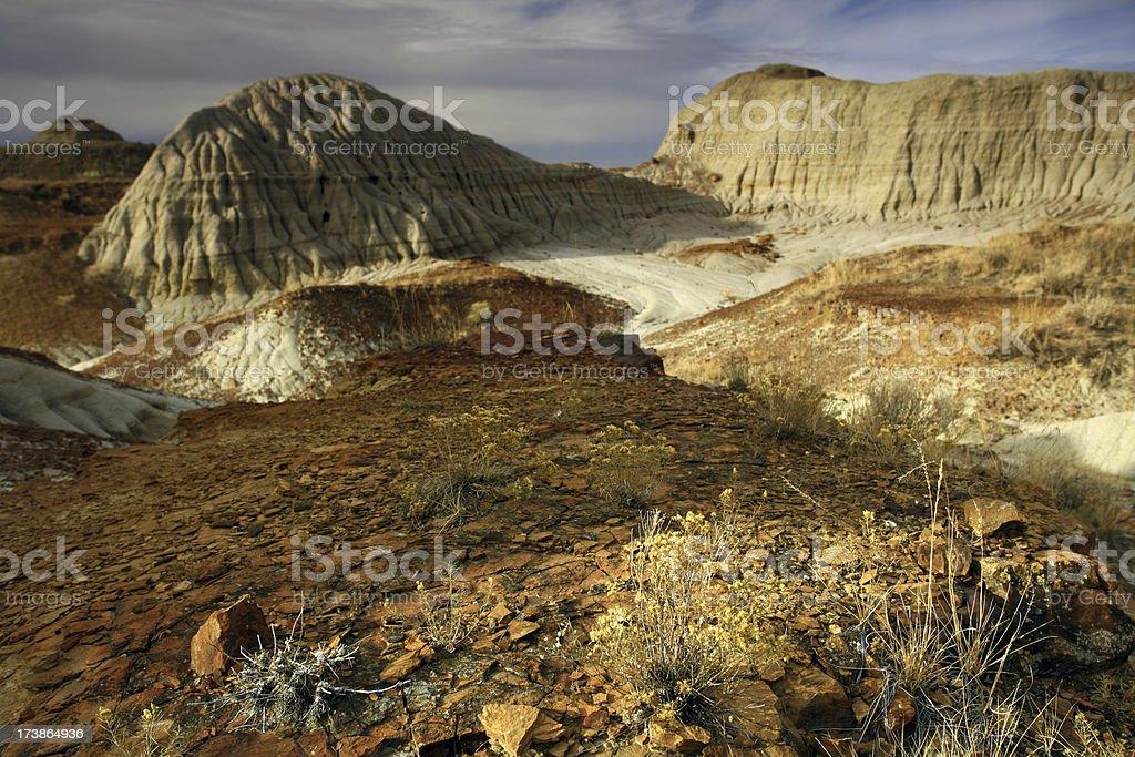 Alberta Badlands stock photo