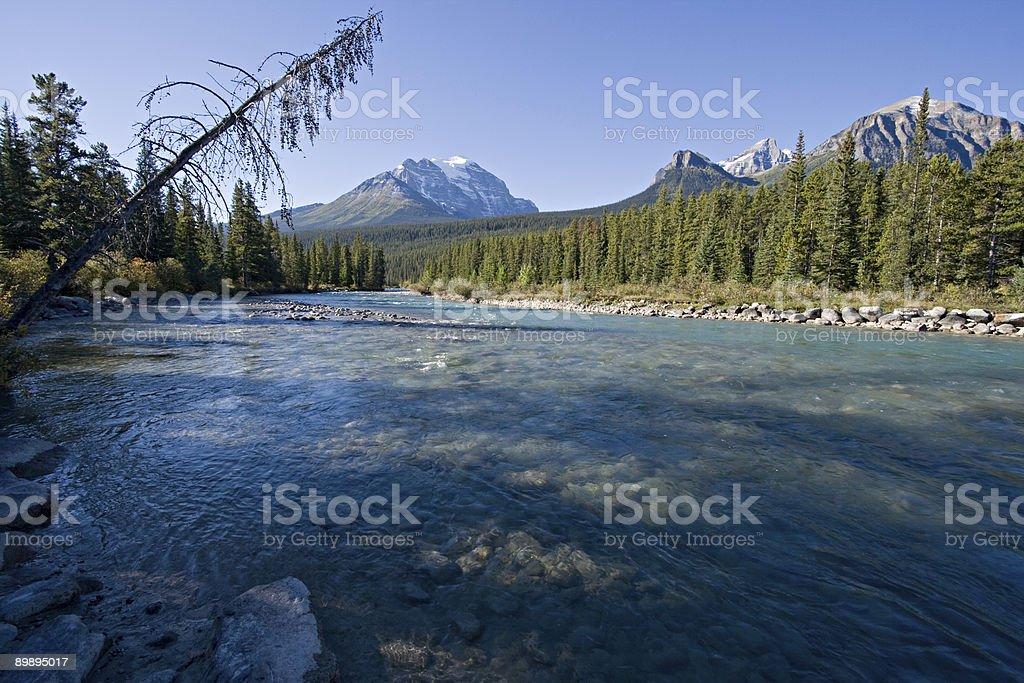 Alberta, Canadá, montañas rocosas canadienses foto de stock libre de derechos
