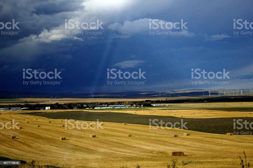 Alberta farm stock photo