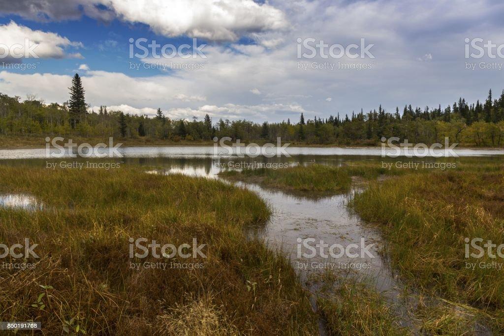 Alberta Foothills Autumn Landscape stock photo