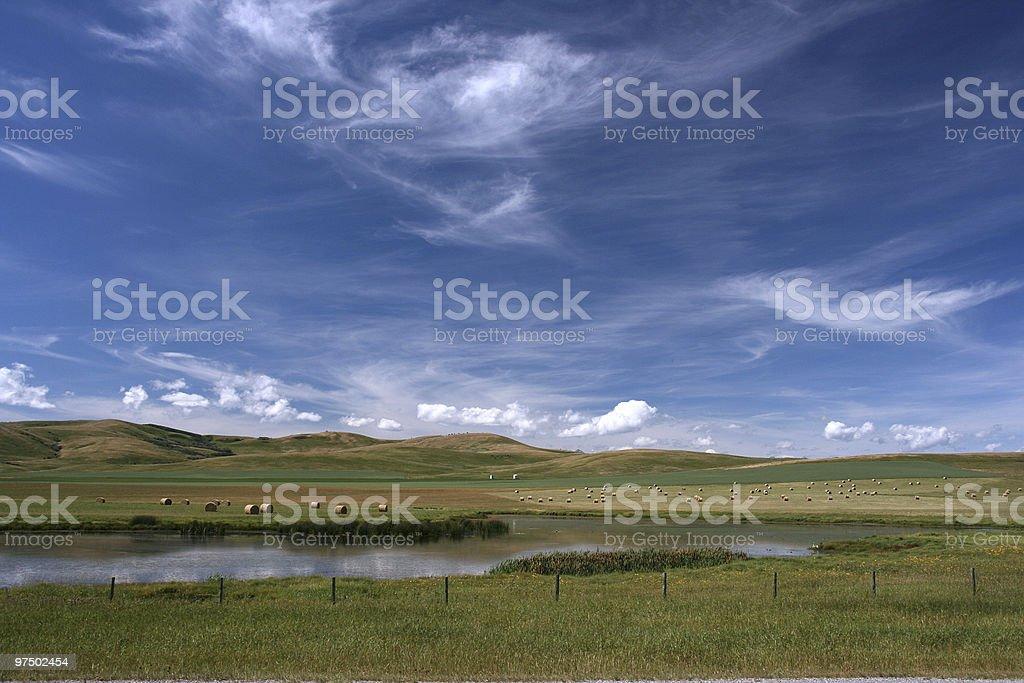 Alberta landscape royalty-free stock photo