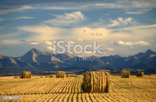 istock Alberta Scenic With Agriculture and Harvest Theme 157381277