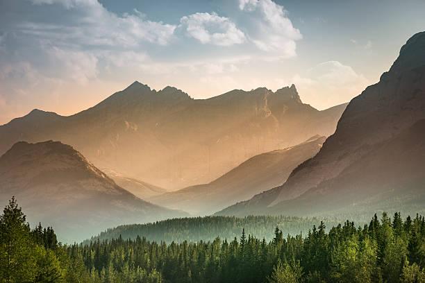 alberta wilderness near banff - 橫向 個照片及圖片檔