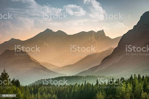 Mist rises over the forest in Banff National Park Alberta Canada