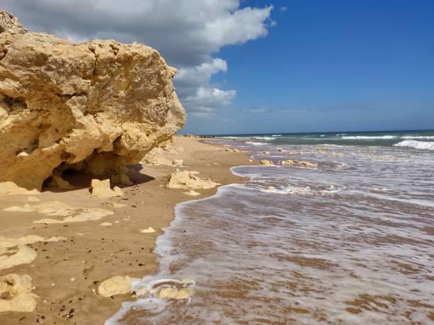 Albufeira sunny seashore. stock photo