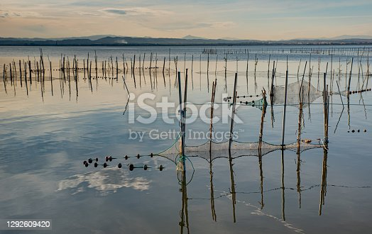 istock Albufera landscape with nets in the water 1292609420