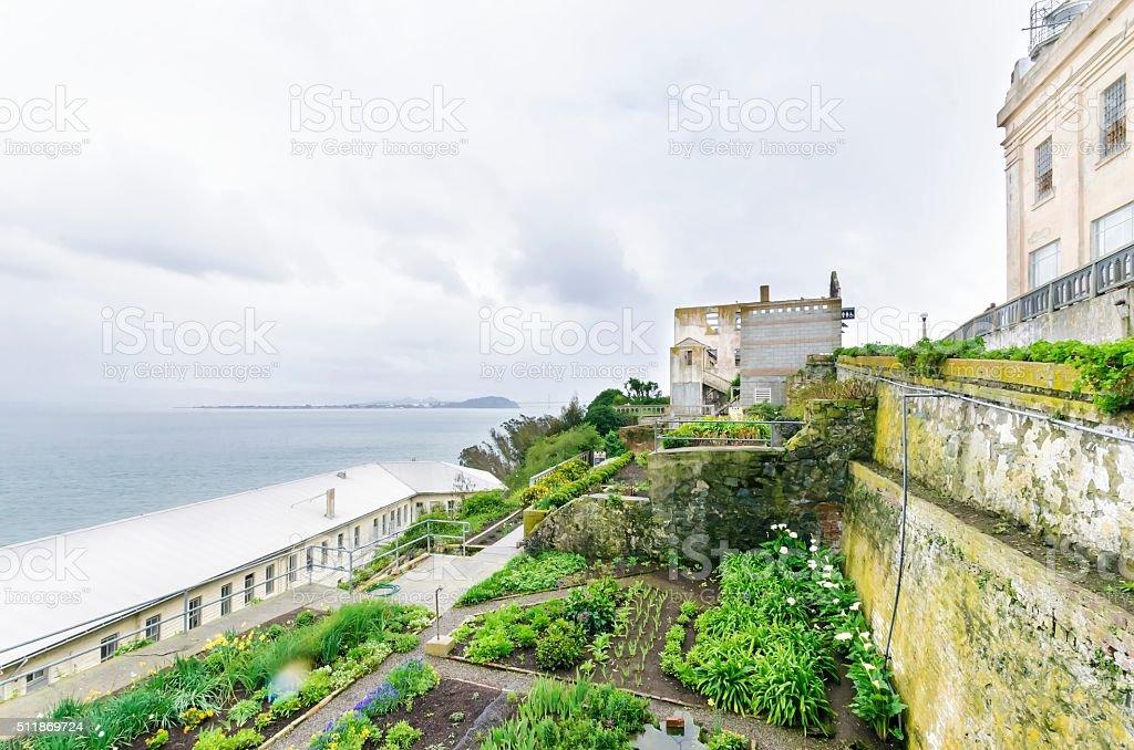 Alcatraz Garden, San Francisco, California stock photo