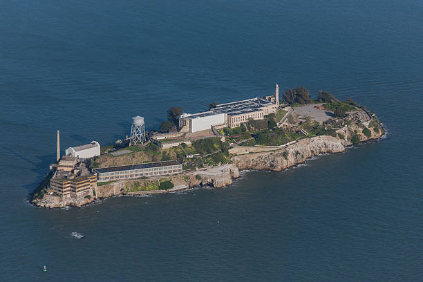 alcatraz - dally stock pictures, royalty-free photos & images