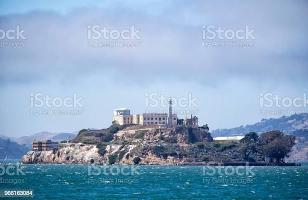 Gannet-foton och fler bilder på Alcatraz Island