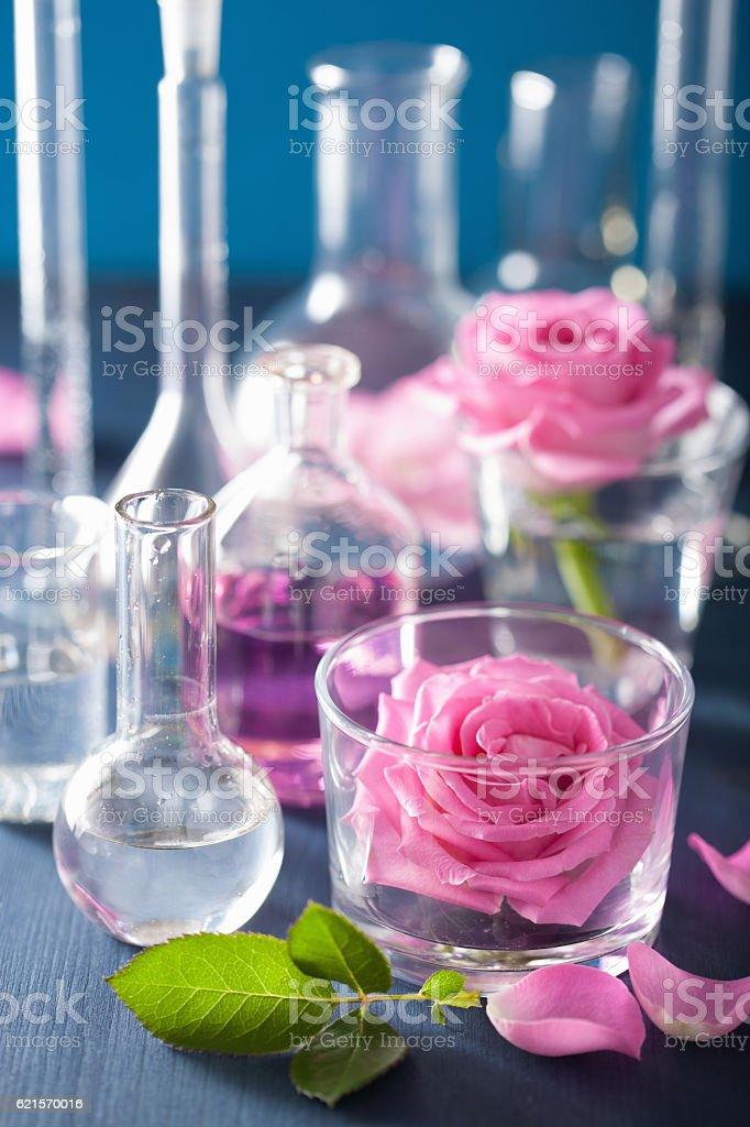 Alchimie et aromathérapie ensemble de fleurs rose et chimiques Flags photo libre de droits