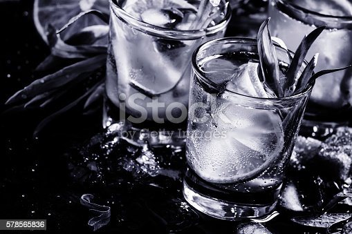 578566044 istock photo Alcoholic cocktail, black and white 578565836