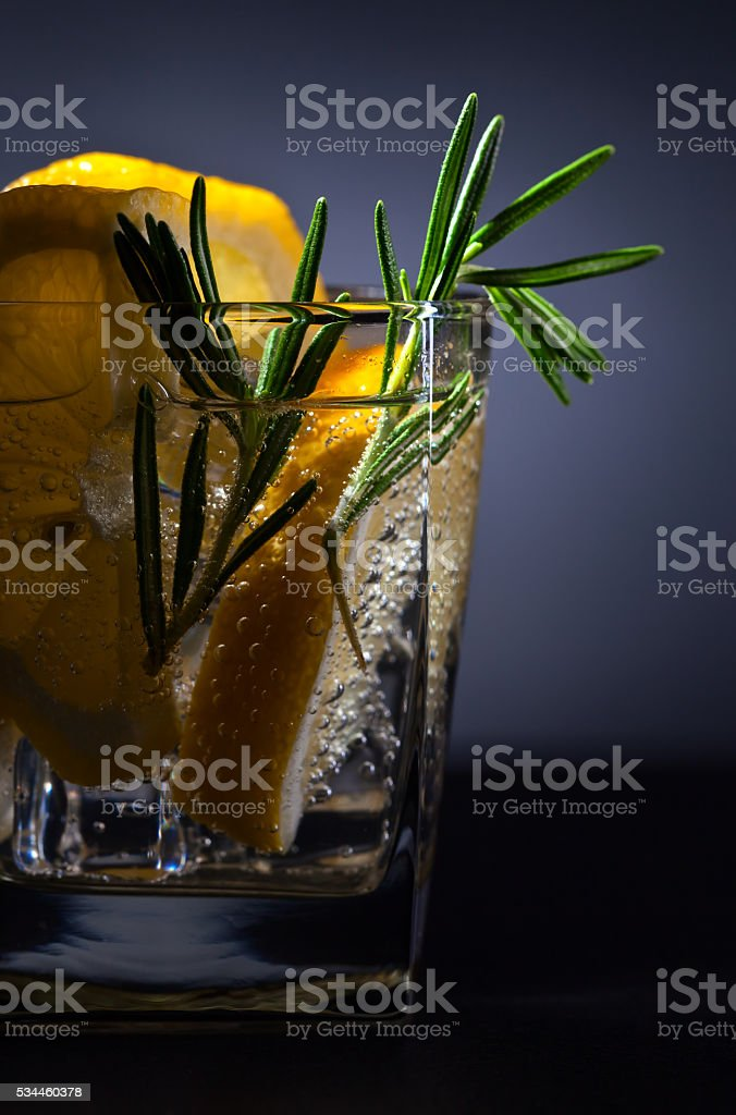 alcoholic drink with tonic, lemon and rosemary stock photo