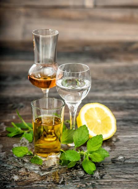 boissons alcoolisées glace citron menthe boissons alimentaires - spiritueux photos et images de collection