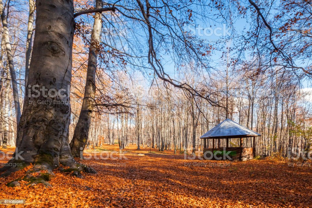 Alcove in the red wood royalty-free stock photo