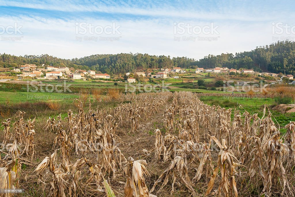 Aldea rural en La Armenteira royalty-free stock photo