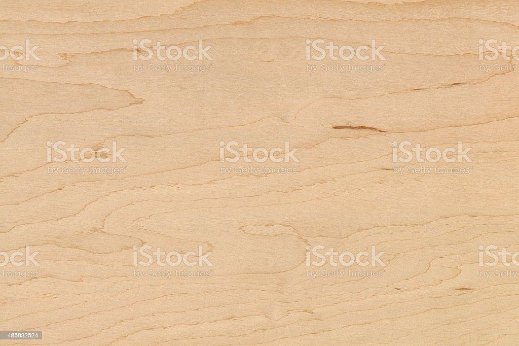 Alder High Resolution Natural Wood Texture No Scratches No Dust