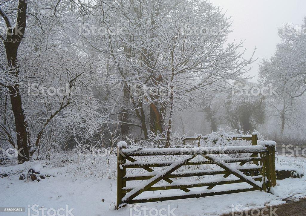 Alderley Edge in the Snow stock photo
