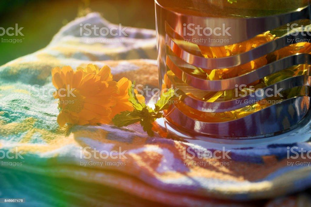 Сalendula flowers stock photo