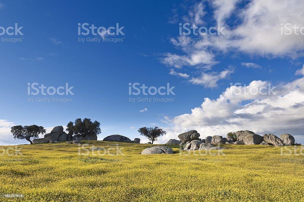Alentejo landscape royalty-free stock photo