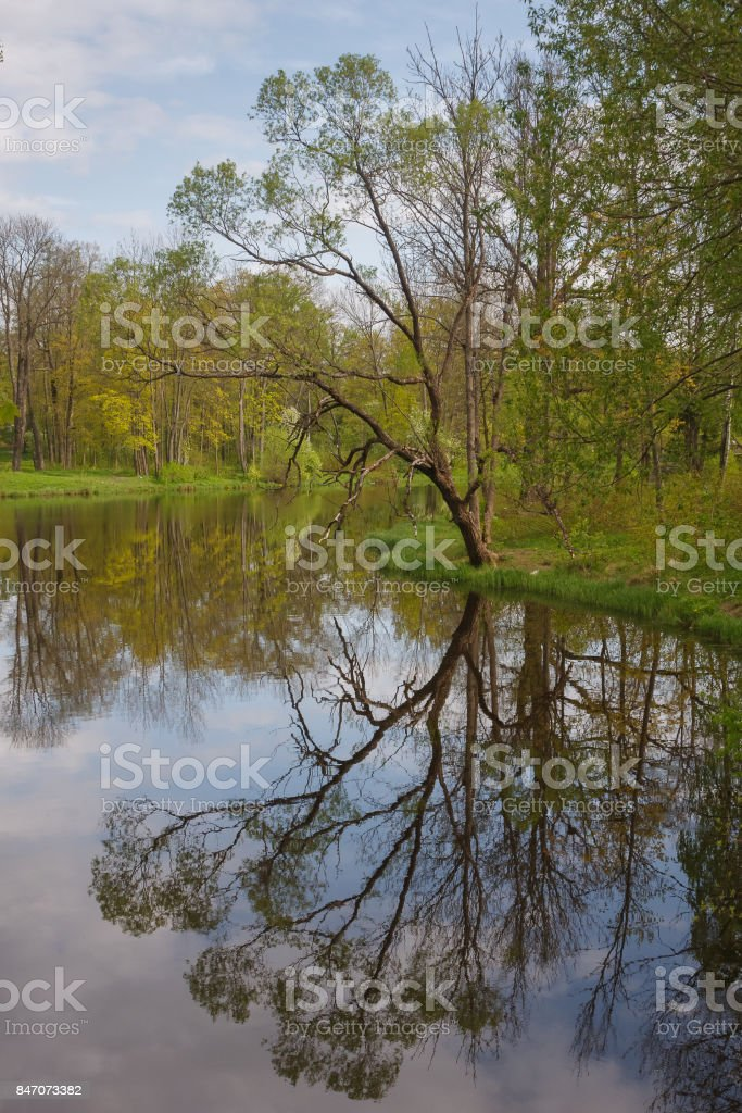 Alexander park in the Pushkin town, Russia stock photo