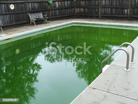 A backyard pool with algae making the water green.