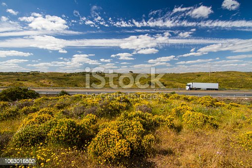 Beautiful spring view of Algarve countryside hills with yellow bushes and blue sky with white clouds located in Portugal.