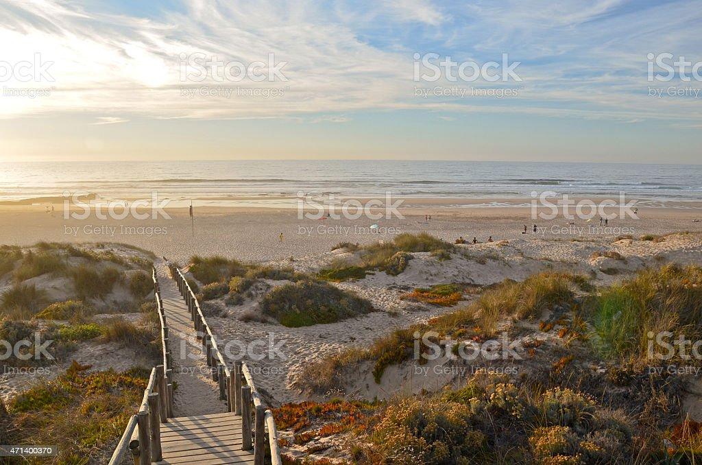 Algarve, Portugal:  Praia Monte Clerigo Strand und Dünen bei Sonnenuntergang – Foto
