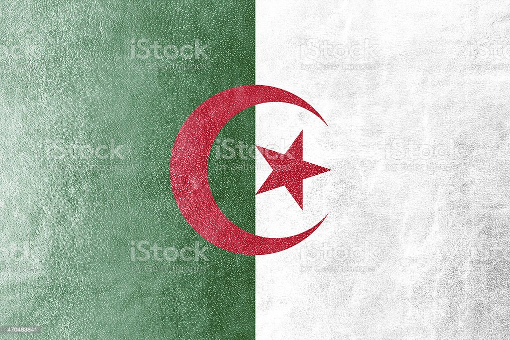 Algeria Flag painted on leather texture royalty-free stock photo