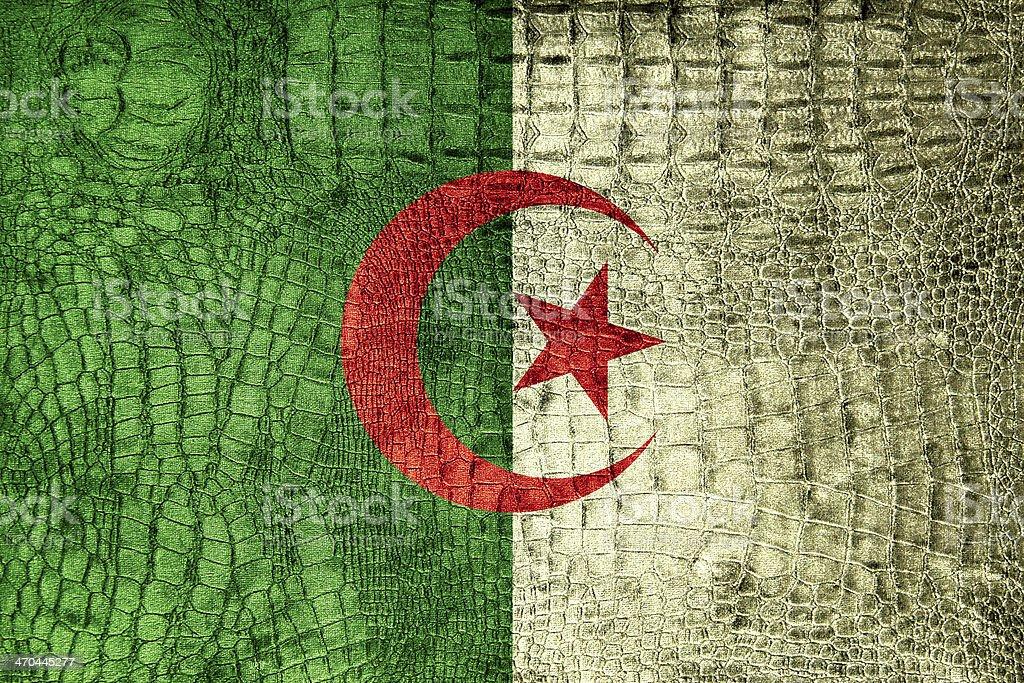 Algeria Flag painted on luxury crocodile texture royalty-free stock photo