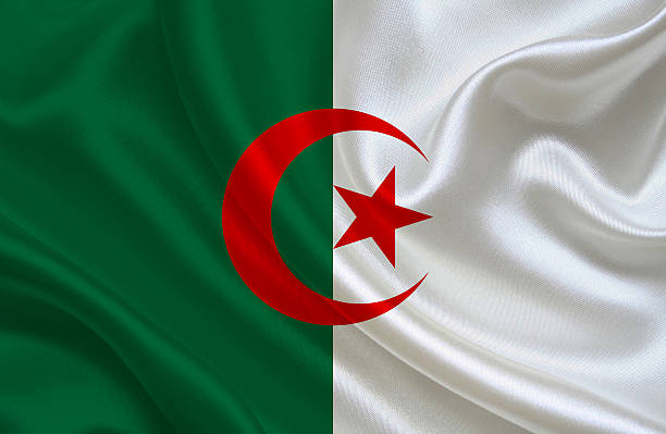 algerian flag - algeria stock photos and pictures