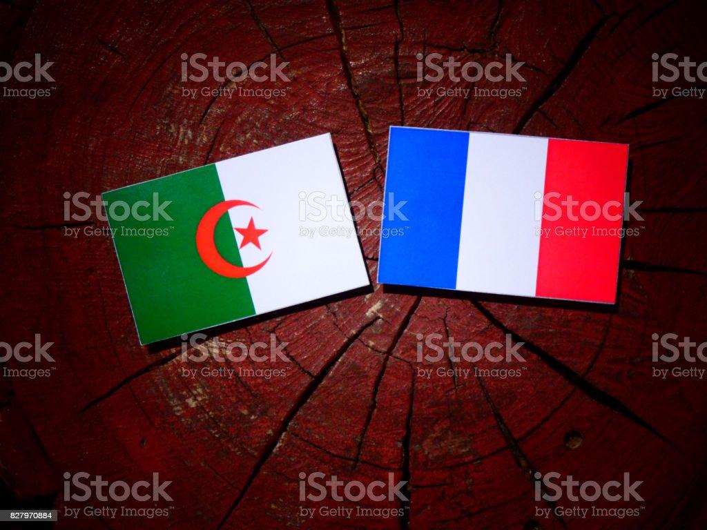 Argelia bandera con bandera francesa sobre un tocón de árbol aislado - foto de stock