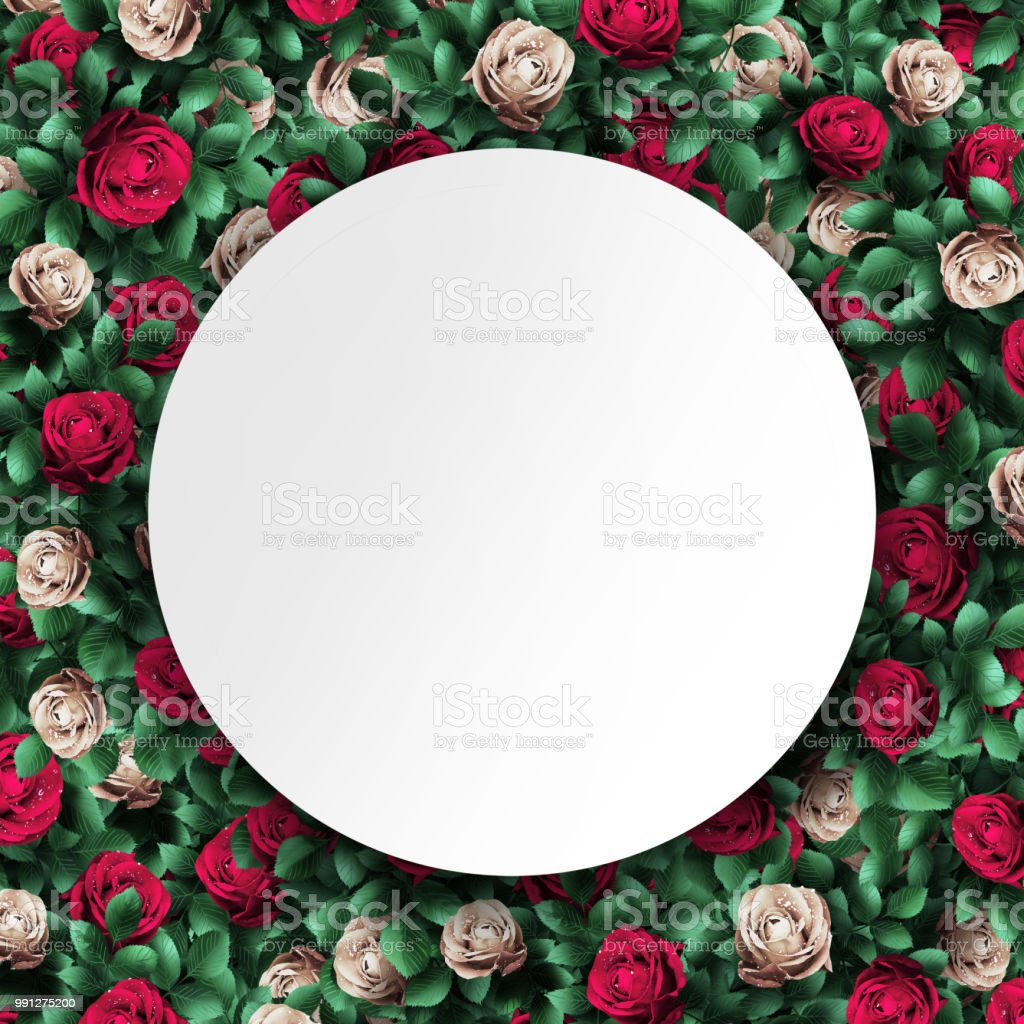 Alice In Wonderland Red Roses And White Roses Background And White