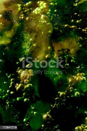 istock Alien algae background 172647219