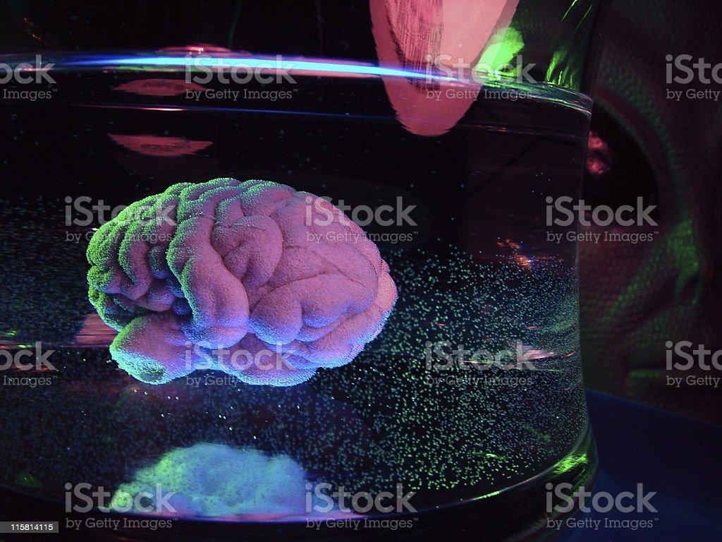 Alien Brain Experiment stock photo