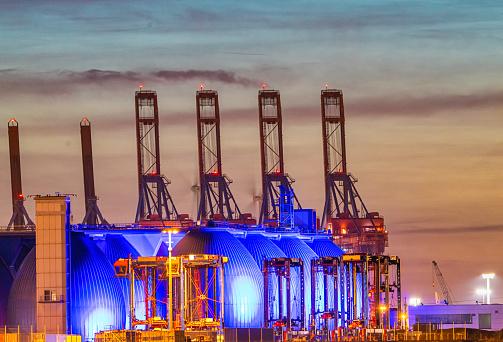 Alien eggs in the port of Hamburg