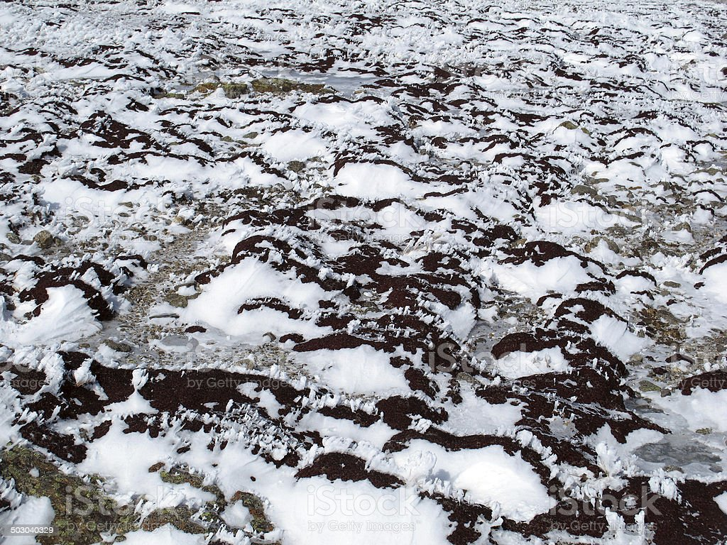 Alien Landscape of Rock, Snow, and Rime Ice stock photo