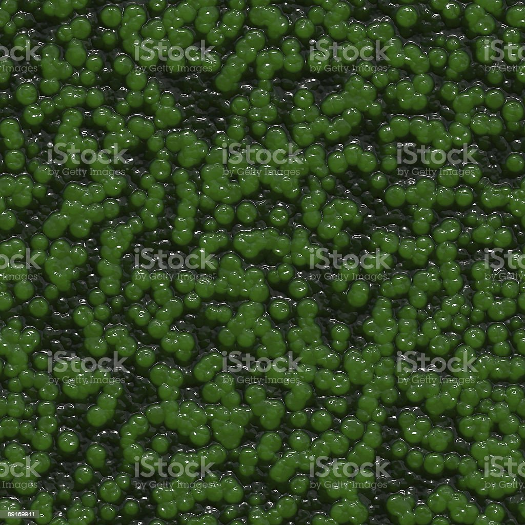 Alien skin (Seamless texture) royalty-free stock photo