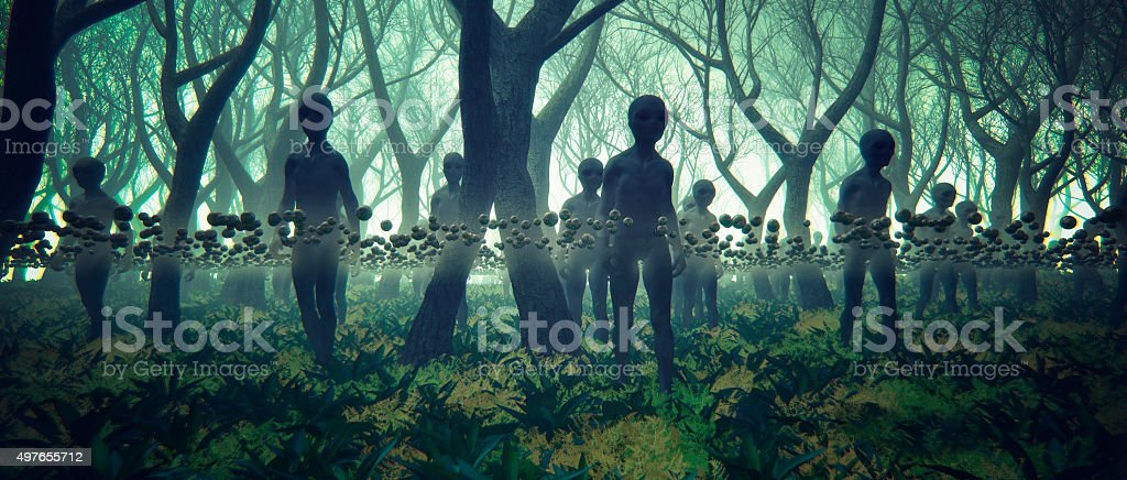 Alien UFO invasion in the forest at night stock photo