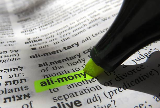 Alimony, dictionary definition stock photo