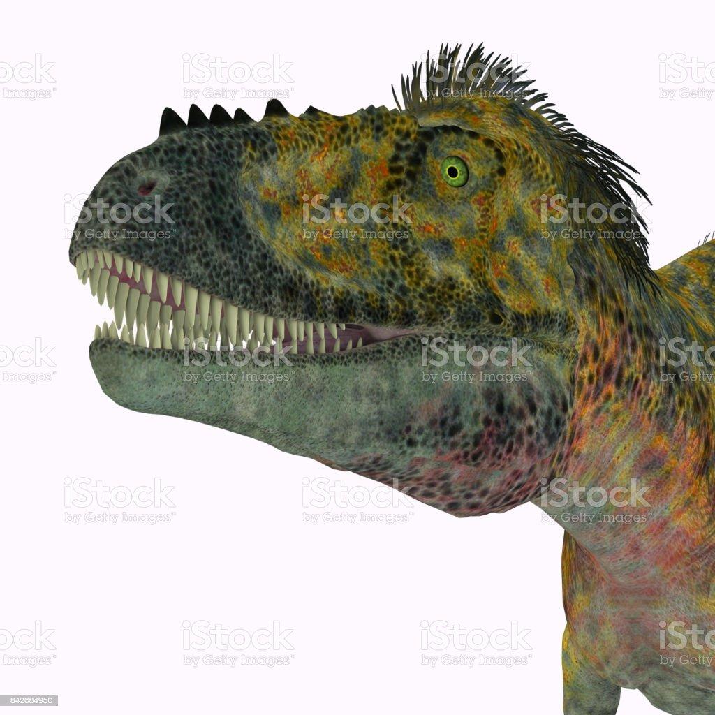 Alioramus Dinosaur Head stock photo