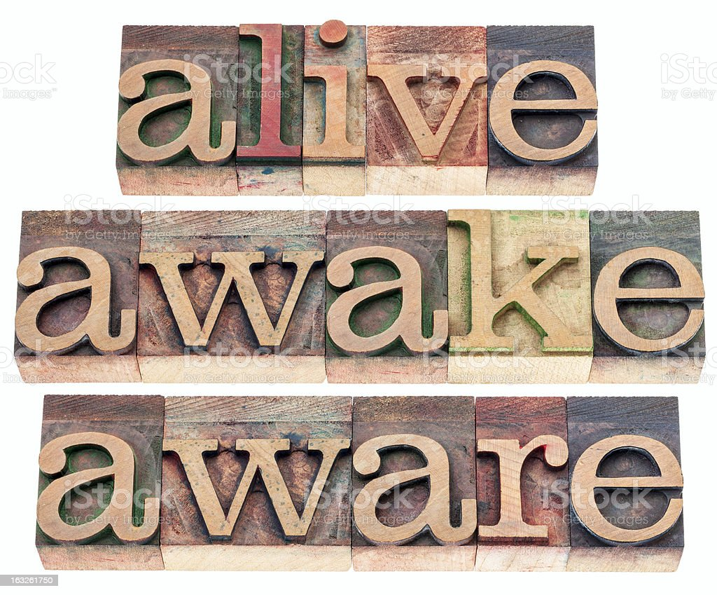 alive, awake, aware royalty-free stock photo